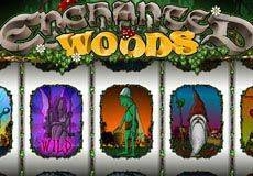 Enchanted Woods Arcade (Microgaming) arcade (Microgaming)